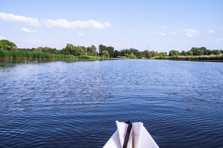 Gose Elbe bei der Reit-Schleuse
