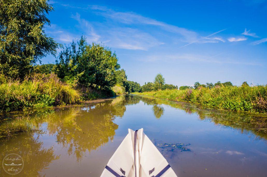 wild bewachsenes Ufer