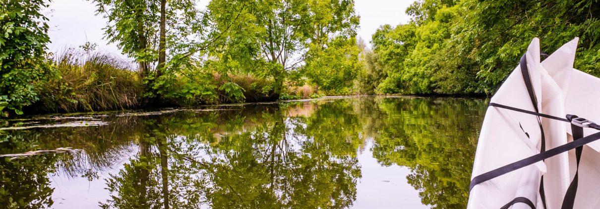Reflektionen im Wasser